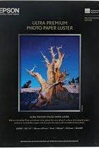 Epson 8.5x11 Photo Paper (Whole Box)